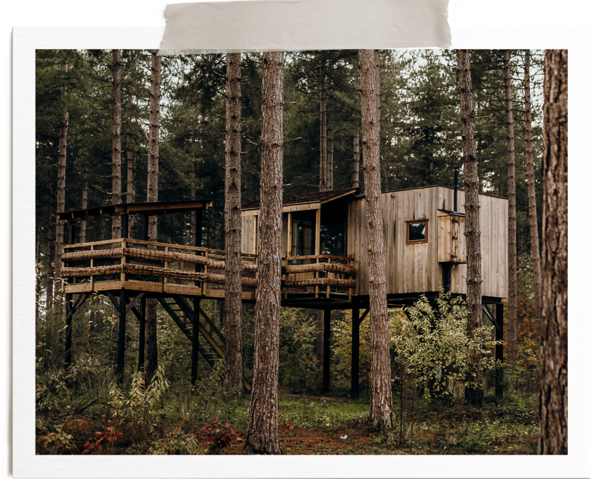 Tree Top Cosy Cabins - Warredal